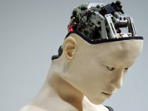 Outsmarting Artificial Intelligence